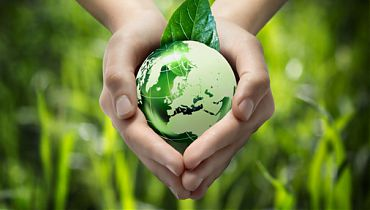 Environment & Social Safeguard
